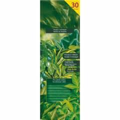 Pałeczki do roślin zielonych 30 szt. SUBSTRAL